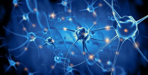 Neurologische Erkrankungen: Was das Blut frühzeitig verrät